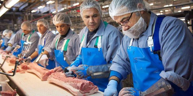New production line to serve the Japanese market creates up to 100 new jobs at the abattoir in Blans near Sønderborg.