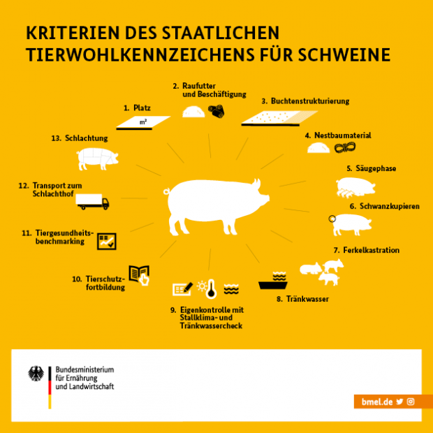 The planned criteria of the national animal welfare label for pig farming include the following points: 1. Space, 2. Roughage and employment, 3. Bay equipment, 4. Nesting materia, 5. Suckling phase, 6. Tail docking, 7. Piglet castration, 8. Water, 9. Self-checking with stable climate and water, 10. Animal welfare education, 11. Animal health benchmarking, 12. Transport, 13. Slaughter