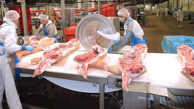 Cutting pig sides. Around 90 per cent of the goods are sold abroad.