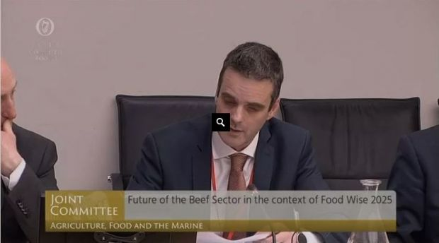 IFA President Joe Healy said IFA has calculated that beef farmers have already incurred Brexit losses of €101 Mill. since last autumn.