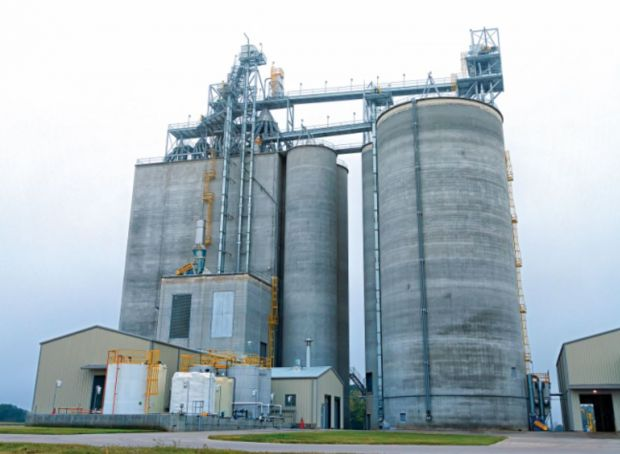 The new feed mill is providing feed for approximately 80 contract growers in the neighbourhood.