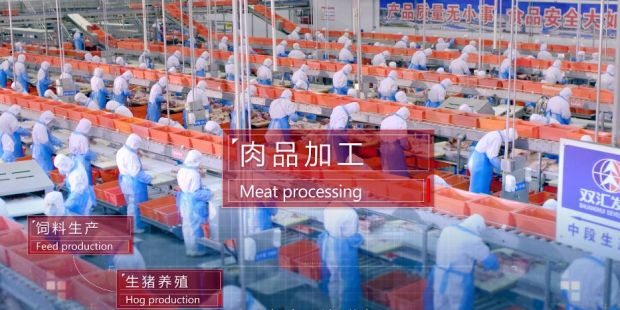The company announced its results in the departments packaged meats, fresh pork and hog production.