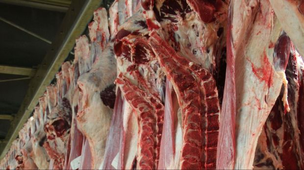 The ban on major events has hit the Danish beef sector particularly hard.